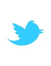 como-criar-um-botao-de-tweet-customizado-em-wordpress