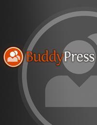 como-instalar-e-configurar-o-buddypress