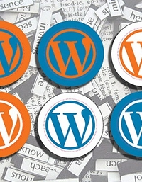 equipe-do-wordpress-ajuda-o-a-mudar-blog-do-wordpress-com-para-o-wordpress-org