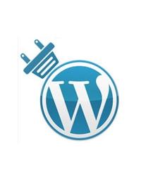 truques-para-personalizar-o-painel-de-controle-do-wordpress