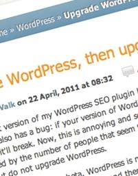 personalizando-a-exibicao-de-posts-em-seu-template-wordpress