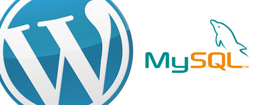wordpress mysql