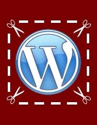 10-novos-snippets-para-o-seu-wordpress