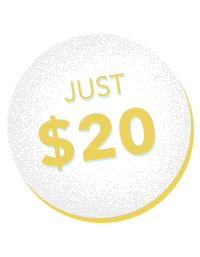 11-temas-wordpress-profissionais-por-apenas-20-dolares