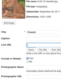 como-adicionar-novos-campos-ao-uploader-de-midia-do-wordpress