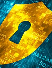 WordPress Segurança